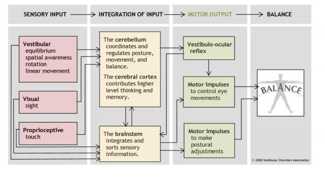 Balance-motor-output